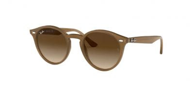 Gafas Ray Ban 2180 616613 opticagracia.es